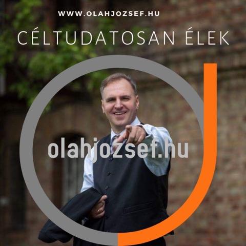 Oláh József HRI Vitalion hálózatépítés